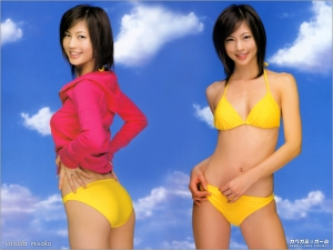 安田美沙子の画像